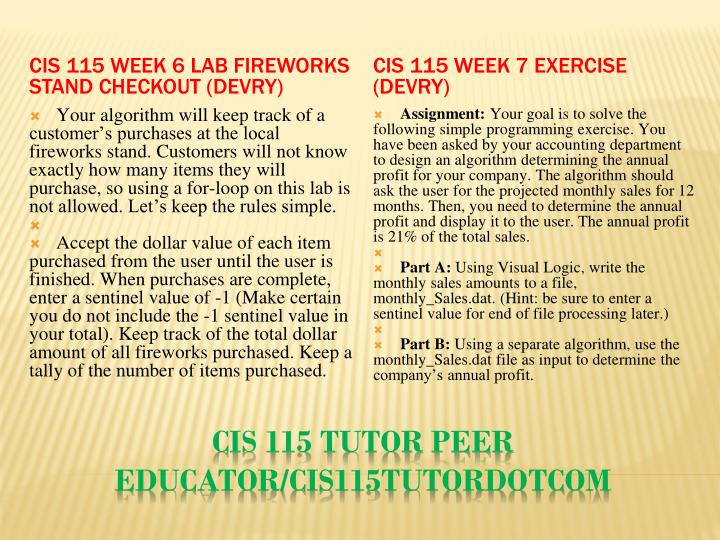 CIS 115 Week 6 Lab Fireworks Stand Checkout (