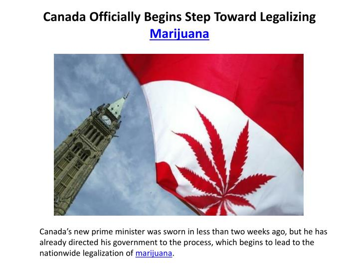 canada officially begins step toward legalizing marijuana