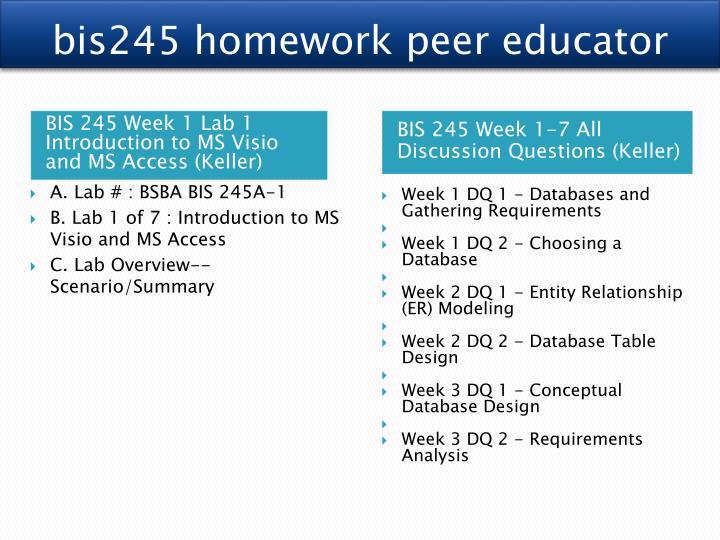 bis245 homework peer