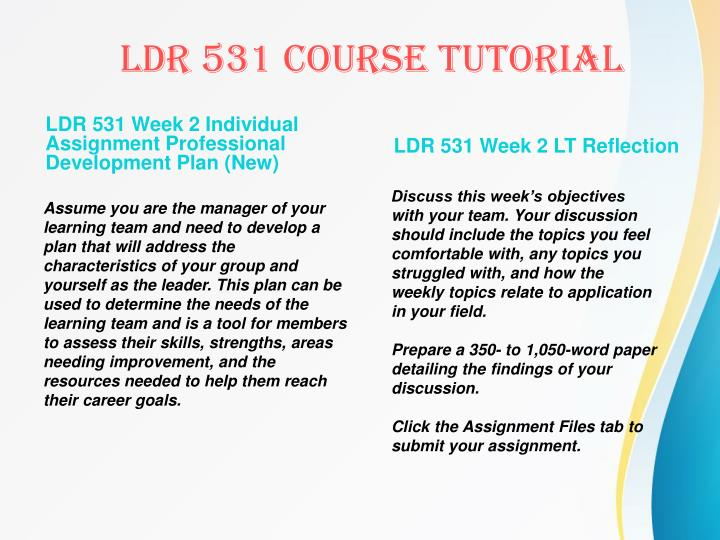 LDR 531 Week 2 Individual Assignment Professional Development Plan (New)