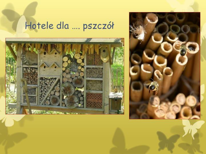 Hotele dla …. pszczół
