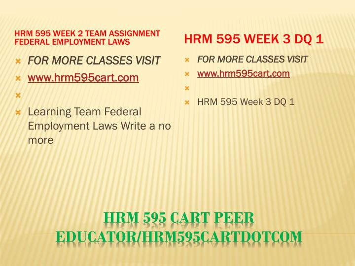 HRM 595 Week 2 Team Assignment Federal Employment Laws