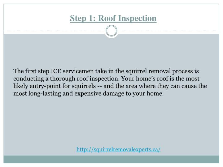 Step 1 roof inspection