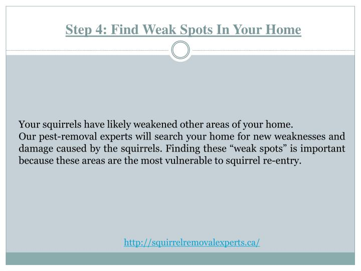 Step 4: Find Weak Spots In Your Home
