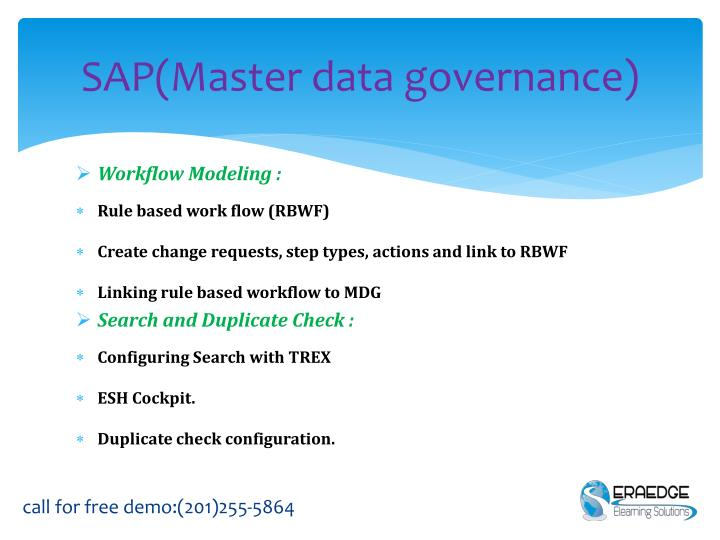 SAP(Master data governance)