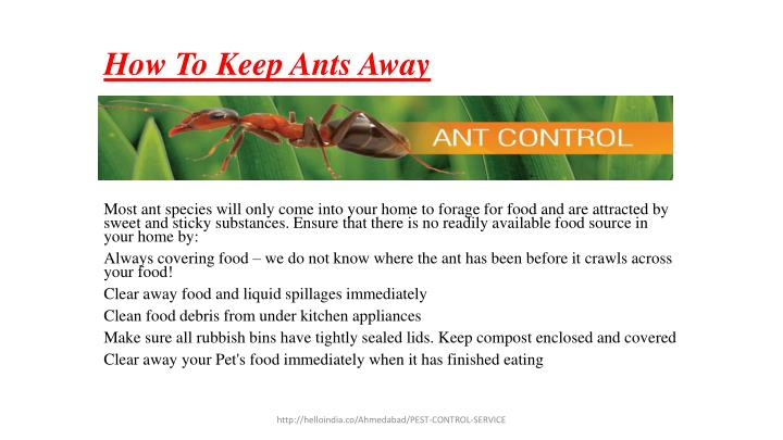 Ppt pest control services for ant in ahmedabad powerpoint presentation id 7250238 - Keep ants away in simple ways ...