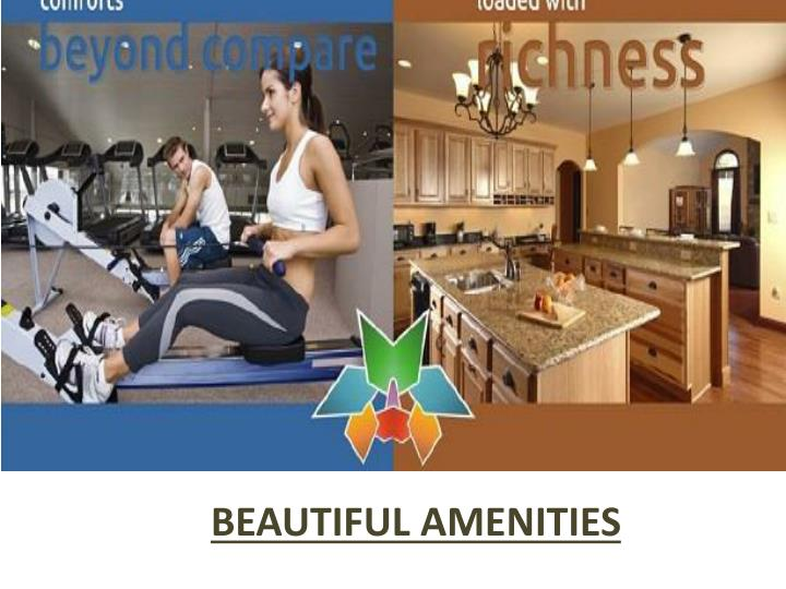 BEAUTIFUL AMENITIES