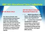 qnt 561 educational tutor indigohelp8