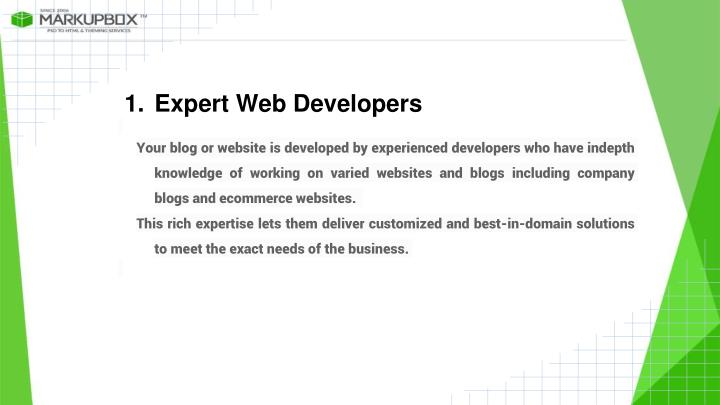 Expert Web Developers