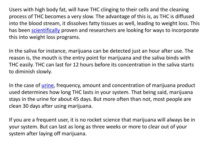 Users with high body fat, will have THC clinging to their cells and the cleaning process of THC beco...