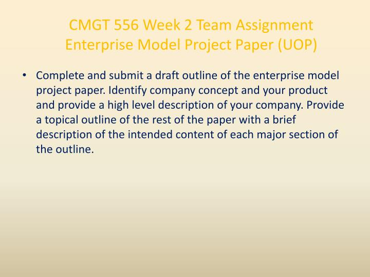 CMGT 556 Week 2 Team Assignment Enterprise Model Project Paper (UOP)