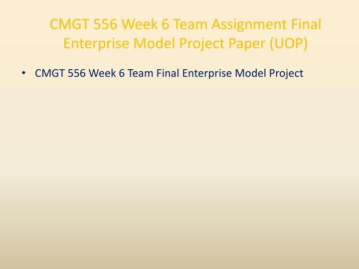 CMGT 556 Week 6 Team Assignment Final Enterprise Model Project Paper (UOP)