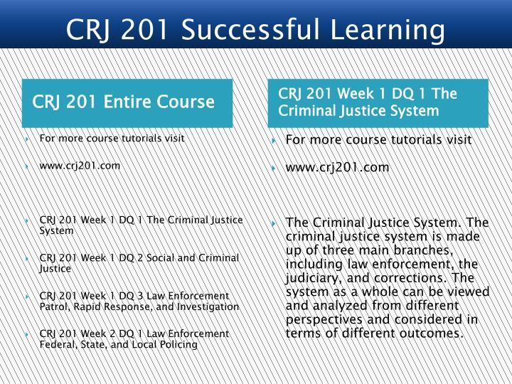 CRJ 201 Entire Course