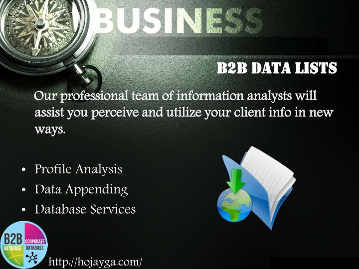 B2B Data Lists