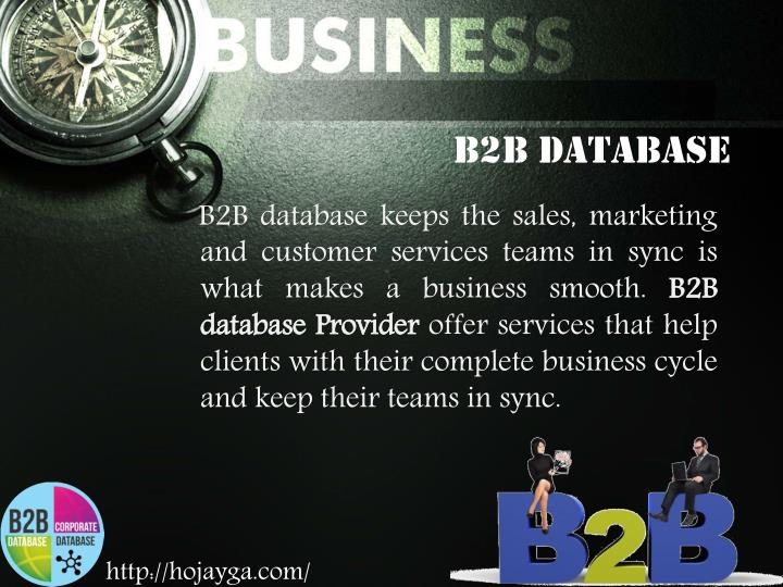 B2B Database