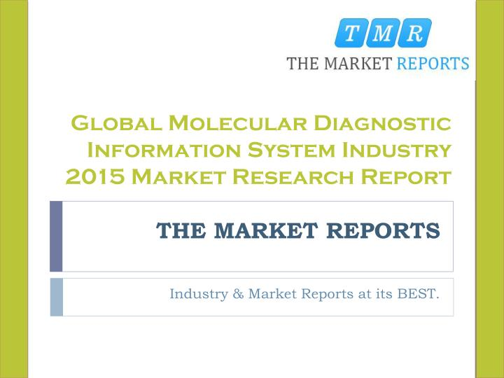 Global Molecular Diagnostic Information System Industry 2015 Market Research Report