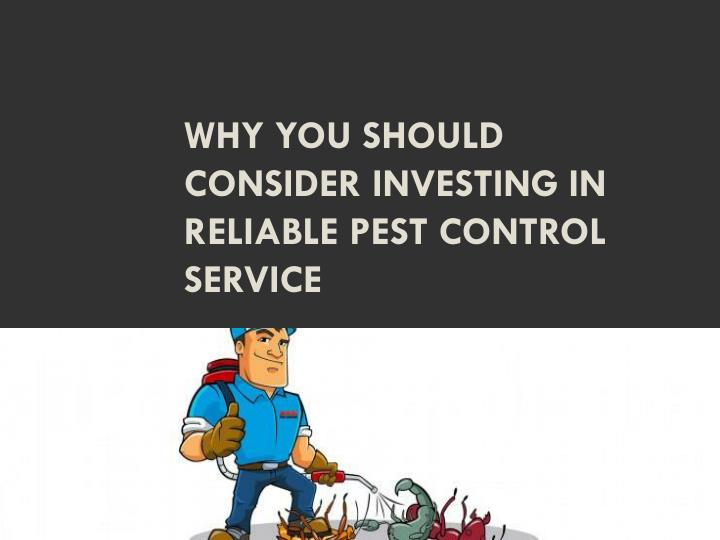 Why you should consider investing in reliable pest control service