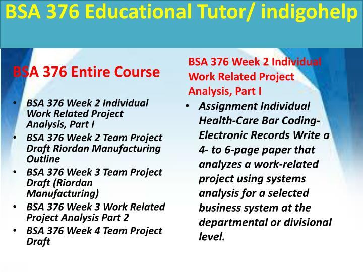 BSA 376 Educational Tutor/