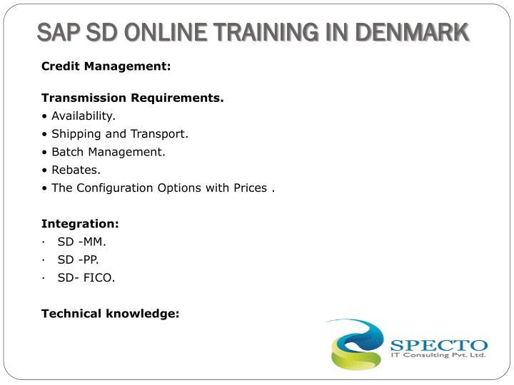 SAP SD ONLINE TRAINING IN DENMARK