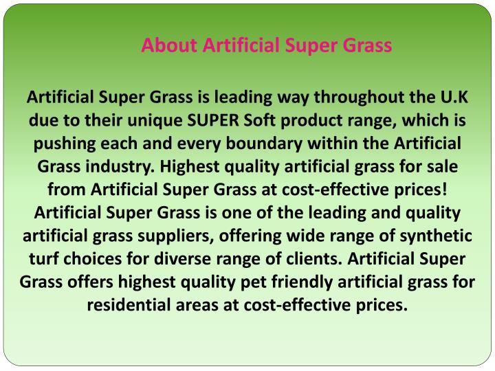 About Artificial Super Grass