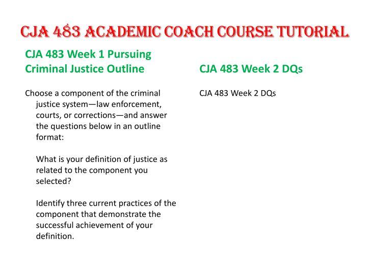 CJA 483 Academic