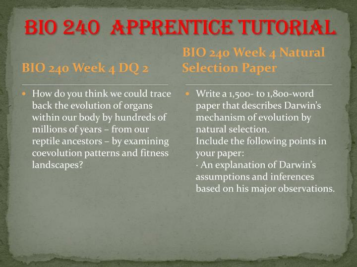 BIO 240  Apprentice Tutorial