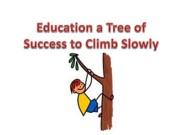Education a Tree of Success to Climb Slowly