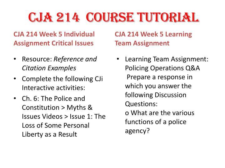 CJA 214