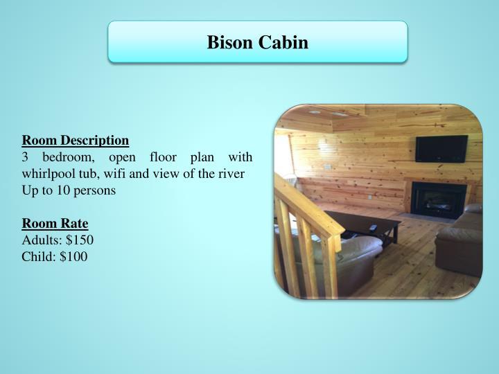 Bison Cabin