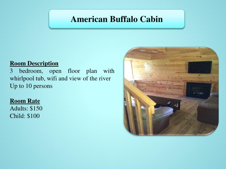 American Buffalo Cabin