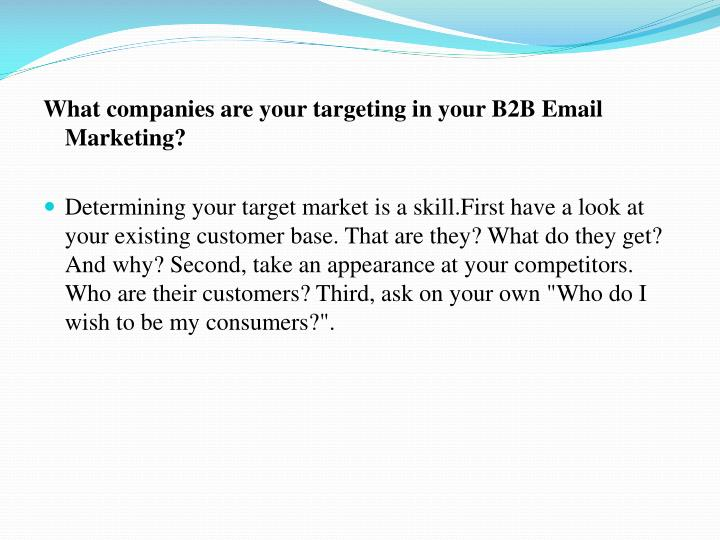 What companies are your targeting in your B2B Email Marketing?