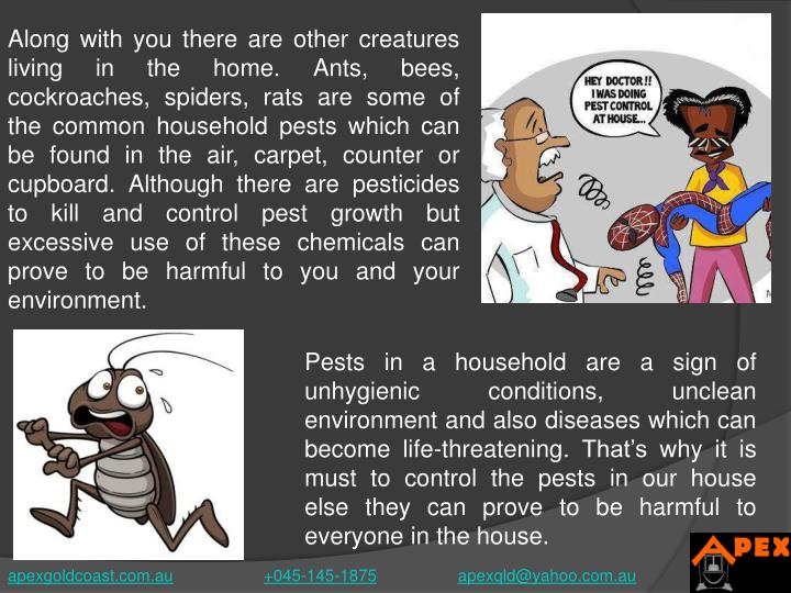 Along with you there are other creatures living in the home. Ants, bees, cockroaches, spiders, rats are some of the common household pests which can be found in the air, carpet, counter or cupboard. Although there are pesticides to kill and control pest growth but excessive use of these chemicals can prove to be harmful to you and your environment.