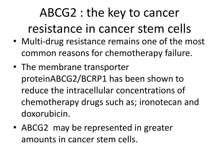 ABCG2 : the key to cancer resistance in cancer stem cells