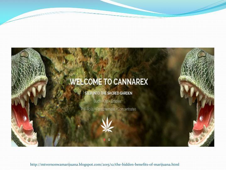 http://mtvernonwamarijuana.blogspot.com/2015/12/the-hidden-benefits-of-marijuana.html