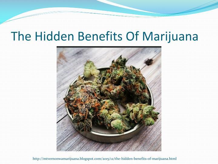 The Hidden Benefits Of Marijuana