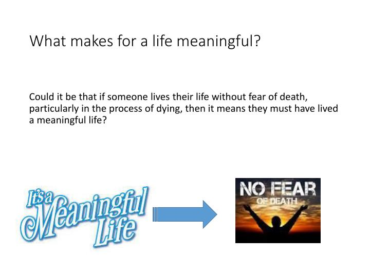What makes for a life meaningful