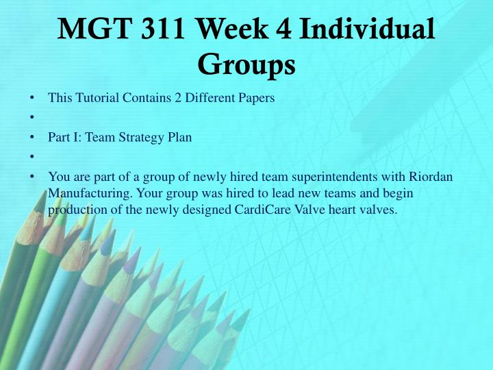 MGT 311 Week 4 Individual Groups