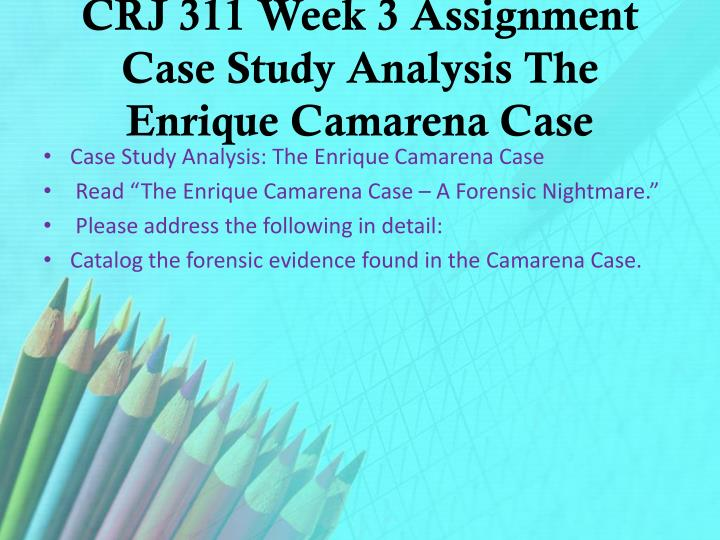 CRJ 311 Week 3 Assignment Case Study Analysis The Enrique