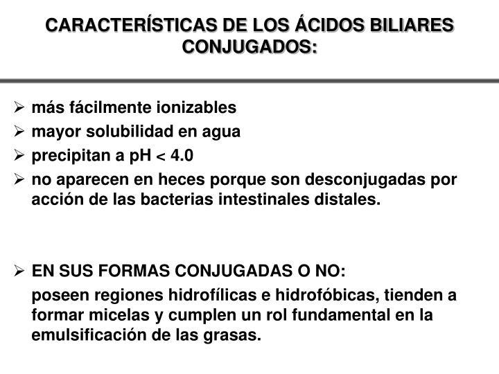 CARACTERÍSTICAS DE LOS ÁCIDOS BILIARES CONJUGADOS: