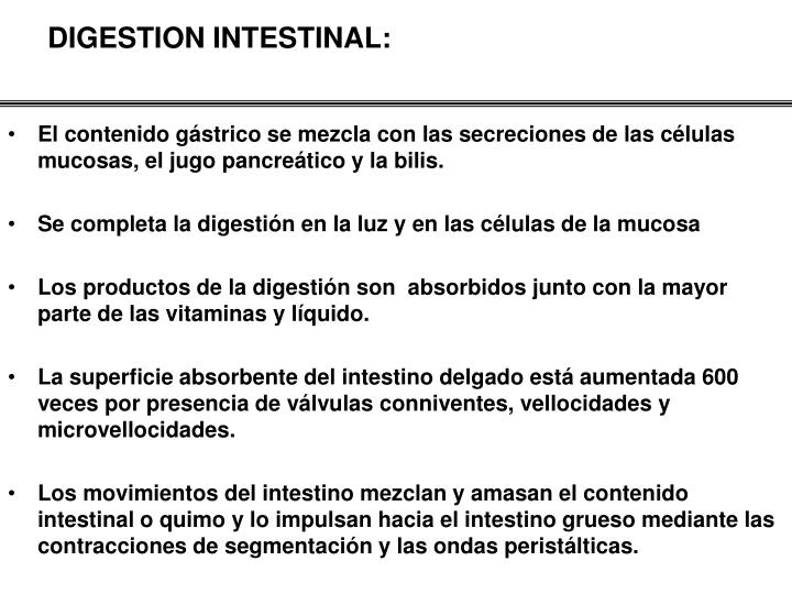 DIGESTION INTESTINAL: