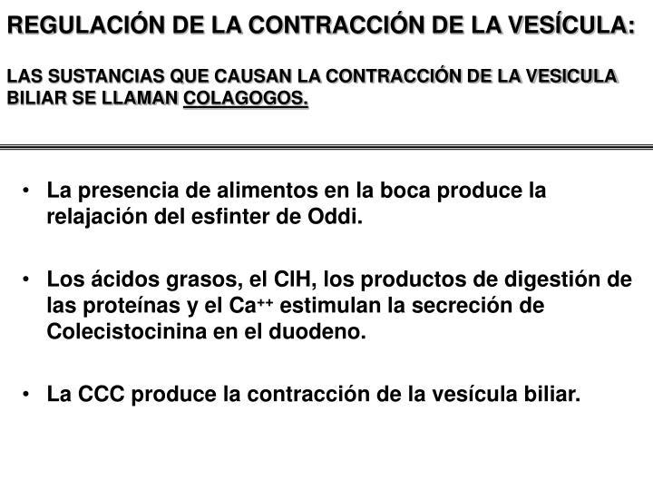 REGULACIÓN DE LA CONTRACCIÓN DE LA VESÍCULA: