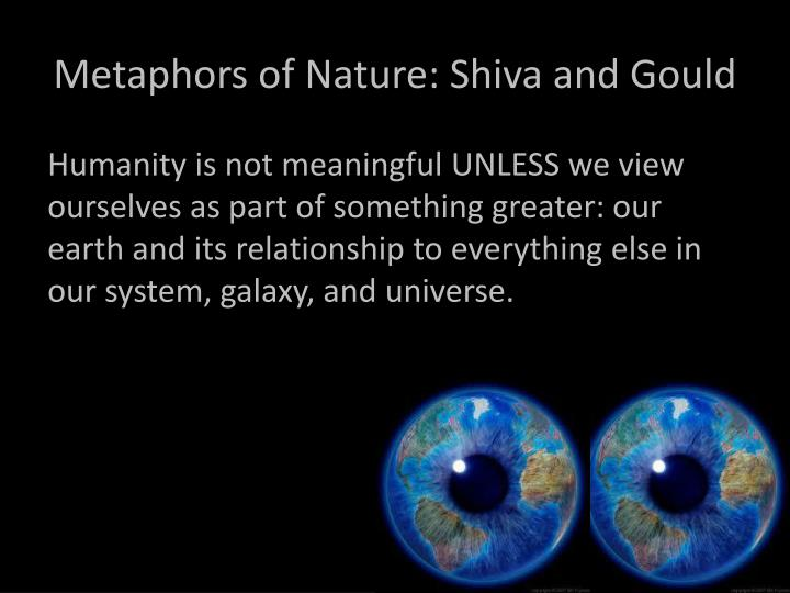 Metaphors of Nature: Shiva and Gould