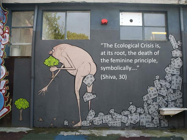 """The Ecological Crisis is, at its root, the death of the feminine principle, symbolically…."""