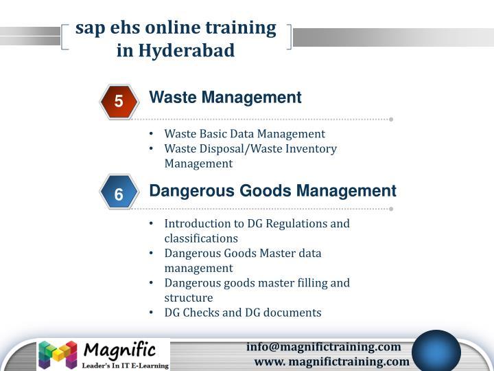 sap ehs online training in Hyderabad
