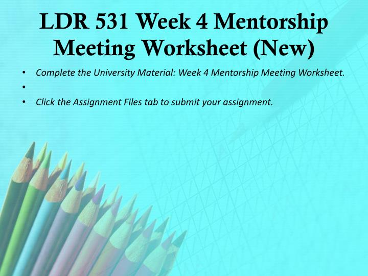 LDR 531 Week 4 Mentorship Meeting Worksheet (New)