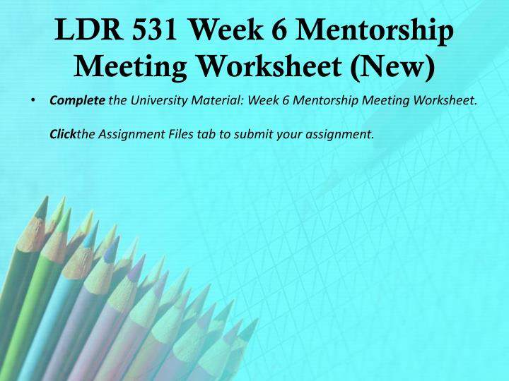 LDR 531 Week 6 Mentorship Meeting Worksheet (New)