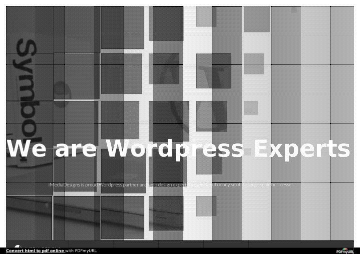 We are Wordpress Experts