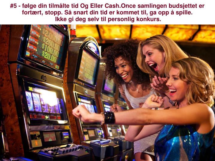 konkurs kasinoet
