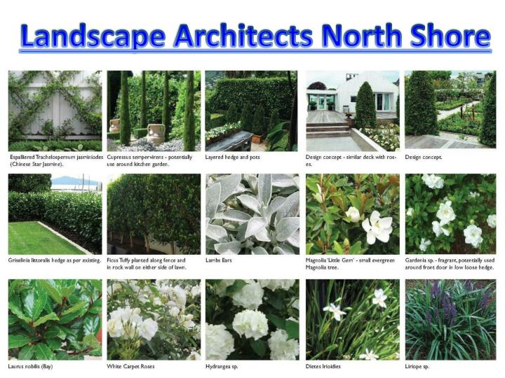 Landscape Architects North Shore