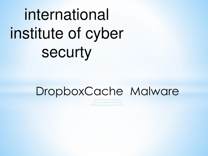International institute of cyber securty
